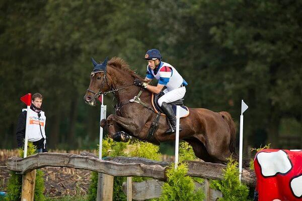 paard met ruiter sprong
